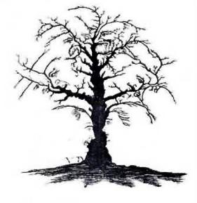 treefaces