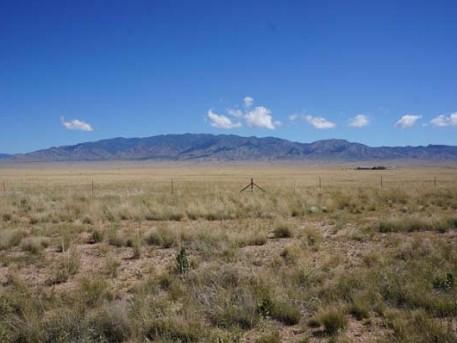 view-of-manzano-mountains-600px-530x398