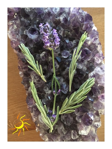 Fresh homegrown lavender.