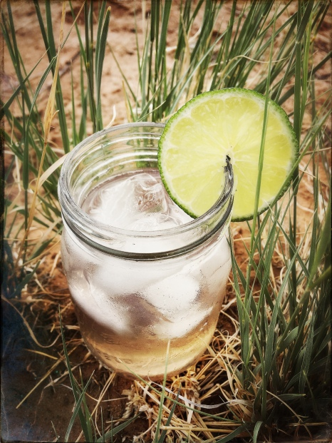 Classic Ernest Hemingway Gin and Tonic.